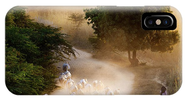 herd and farmer going home in the evening, Bagan Myanmar IPhone Case