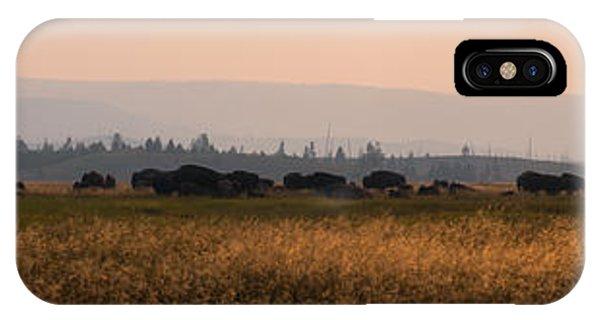 Herd Of Bison Grazing Panorama IPhone Case