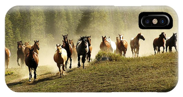 Herd Of Wild Horses IPhone Case