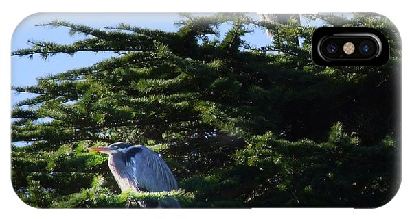 Heron Family At Rest IPhone Case