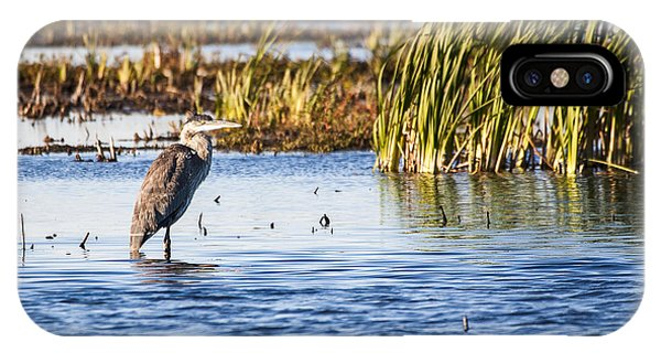 Horicon Marsh iPhone Case - Heron - Horicon Marsh - Wisconsin by Steven Ralser