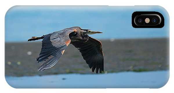 Heron In Flight IPhone Case
