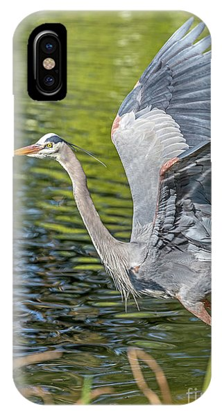 IPhone Case featuring the photograph Heron Liftoff by Kate Brown