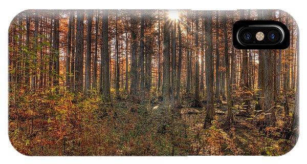 Cypress iPhone Case - Heron Pond Cypress Trees by Steve Gadomski