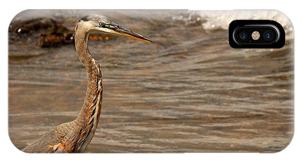 Heron Supper IPhone Case