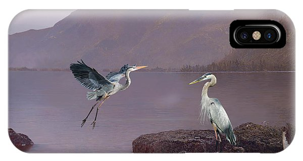 Avian iPhone Case - Herons At Lake George by M Spadecaller