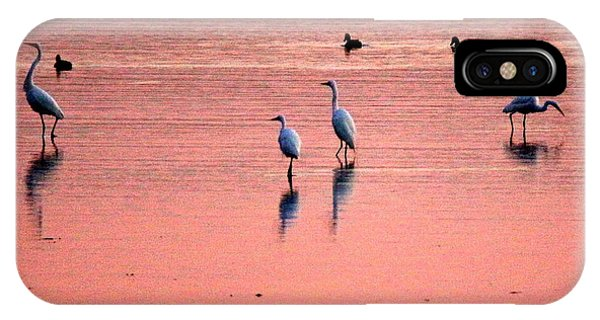 Herons At Sunrise IPhone Case