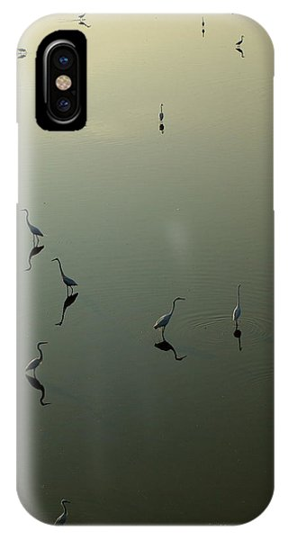 Herons On Lake 367 IPhone Case