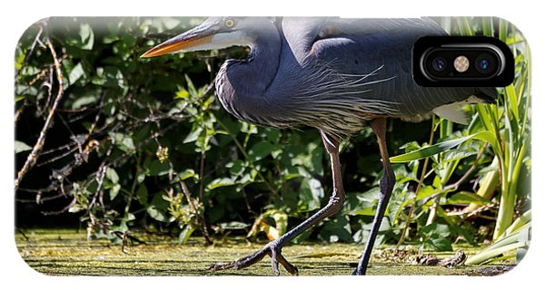 IPhone Case featuring the photograph Herons Pond by Sue Harper