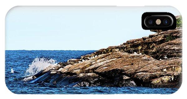 Herring Gull Picnic IPhone Case