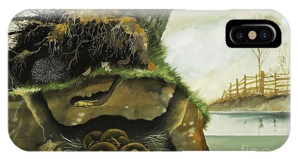 Groundhog iPhone Case - Hibernation by David Nockels