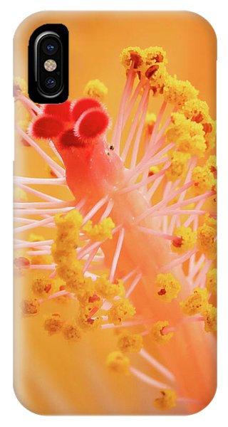 IPhone Case featuring the photograph Hibiscus-1 by David Coblitz