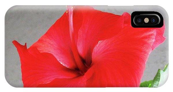 Hibiscus #2 IPhone Case