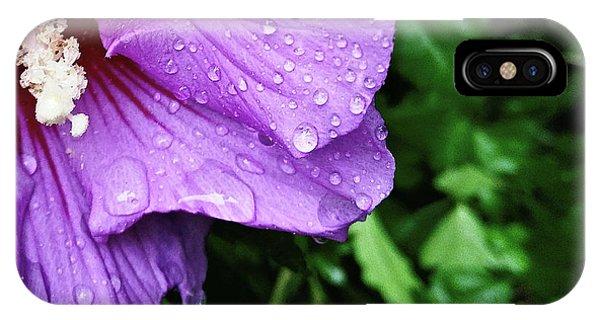 Hibiscus Corner IPhone Case
