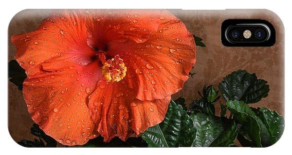 Hibiscus Fine Art IPhone Case