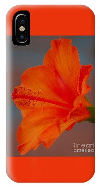 Hot Orange Hibiscus IPhone Case