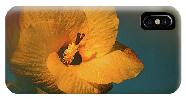Pistil iPhone Case - Hibiscus by Marvin Spates
