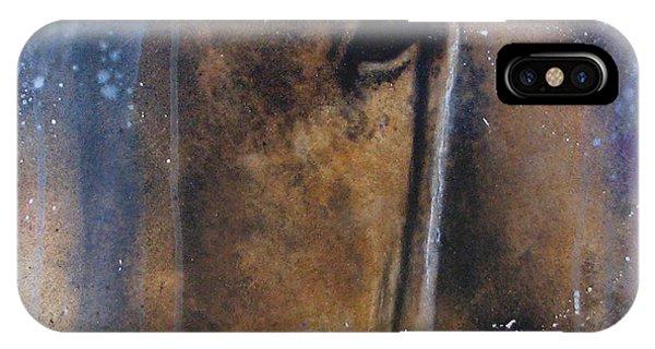 Hidden Horse IPhone Case
