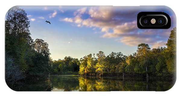Cypress iPhone Case - Hidden Light by Marvin Spates