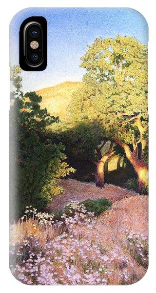 Hidden Oaks IPhone Case