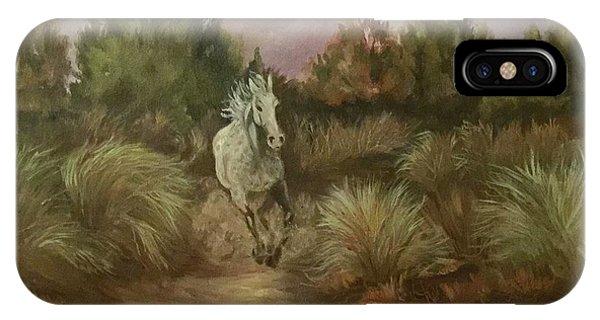 High Desert Runner IPhone Case