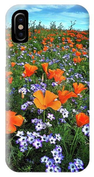 High Desert Wildflowers IPhone Case