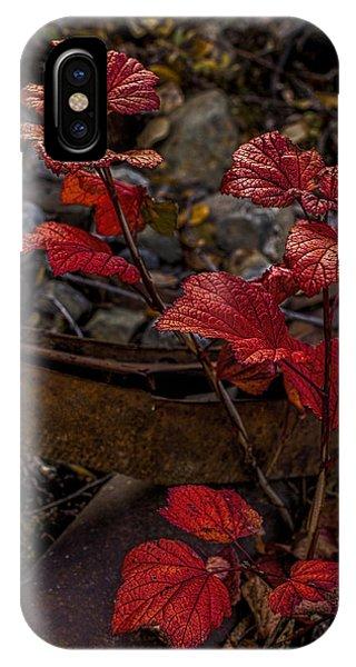 Highbush Cranberry Leaves IPhone Case