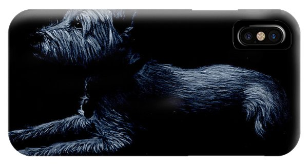 Highland Terrier IPhone Case