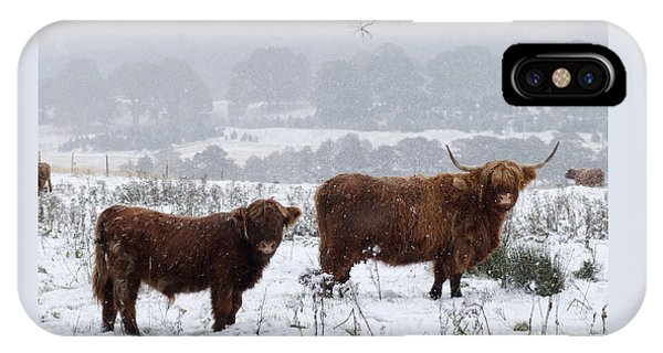 Highlanders In Snow IPhone Case