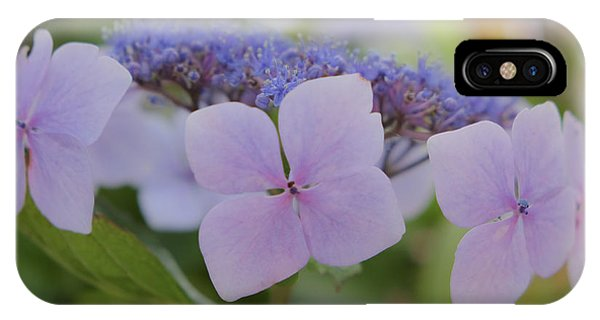 Highlands Hydrangea IPhone Case