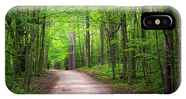 Hiking Path iPhone Case - Hiking Trail In Green Forest by Elena Elisseeva