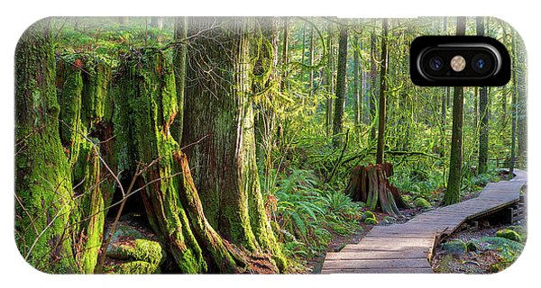 Hiking Trail Through Forest In Lynn Canyon Park IPhone Case