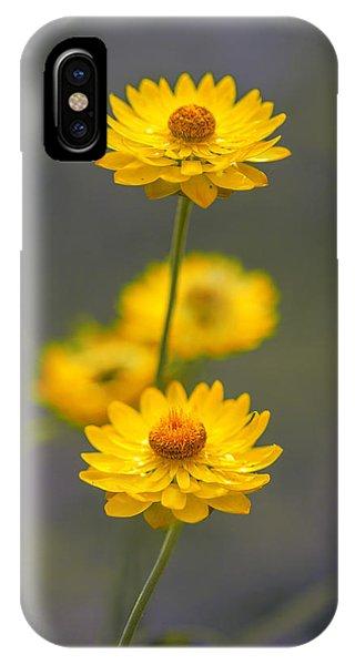 Nice iPhone Case - Hillflowers by Az Jackson