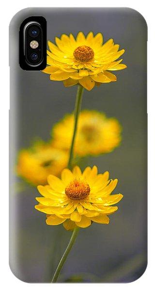 Hillflowers IPhone Case
