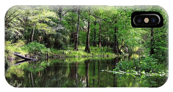 Hillsborough River Vista IPhone Case