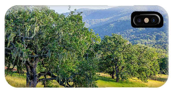 Hillside Oaks IPhone Case