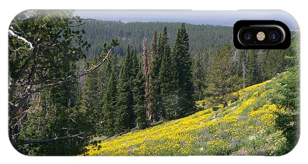 Hillside Wildflowers IPhone Case