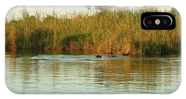 IPhone Case featuring the photograph Hippos, South Africa by Karen Zuk Rosenblatt