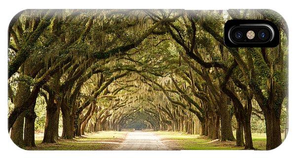 Historic Live Oak Trees IPhone Case