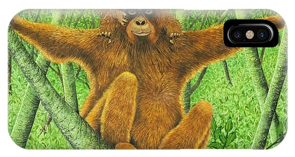 Orangutan iPhone Case - Hnag On In There by Pat Scott