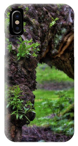 Hobbit Tree IPhone Case