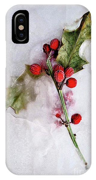 iPhone Case - Holly 2 by Margie Hurwich