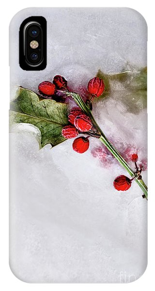 iPhone Case - Holly 3 by Margie Hurwich