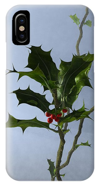 iPhone Case - Holly by Jules Gompertz