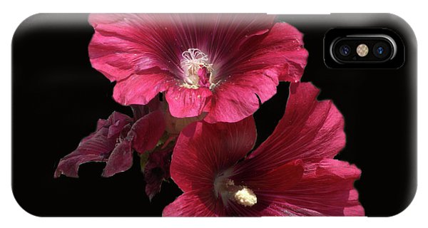 Hollyhock Glory IPhone Case