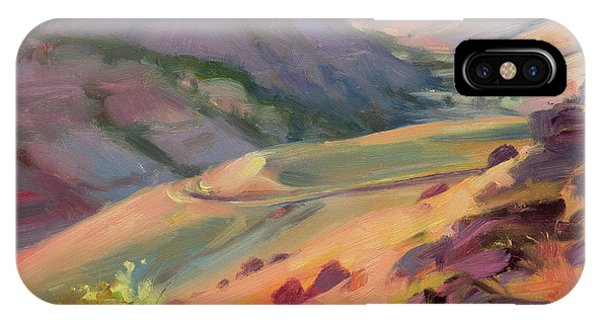 Bush iPhone Case - Home Country by Steve Henderson