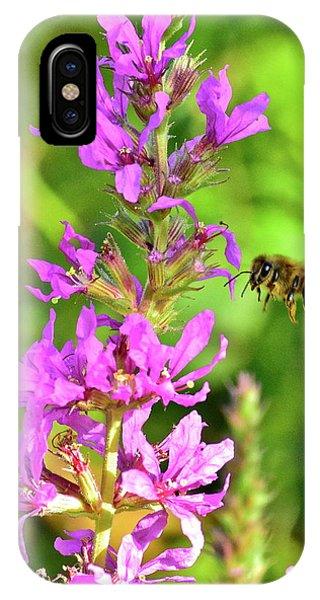 Honey Bee In Flight IPhone Case