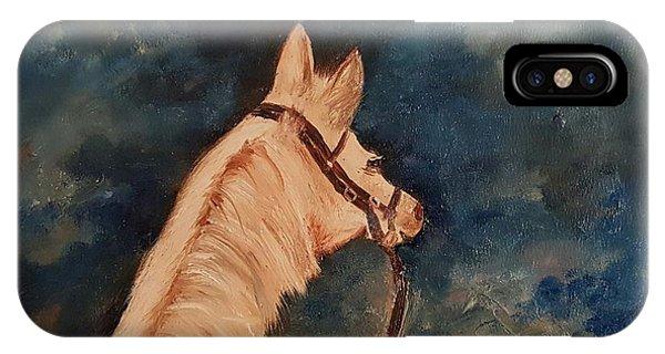 Honey Palomino Horse 28 IPhone Case
