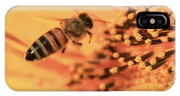 Honeybee iPhone X Case - Honeybee And Sunflower by Chris Berry