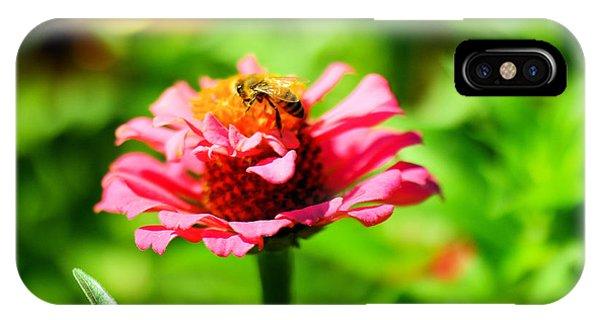 Honeybee iPhone X Case - Honeybee On A Flower by Jeff Swan